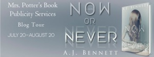 Now or Never_ad_fb