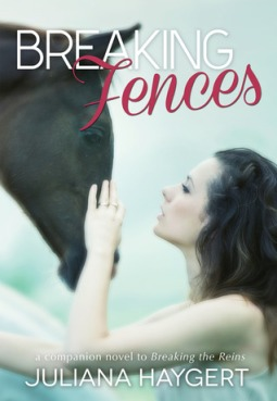 BreakingFences