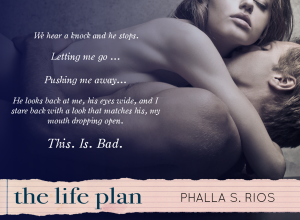 Teaser - The Life Plan