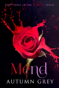 Mend (Havoc #3) by Autumn Grey